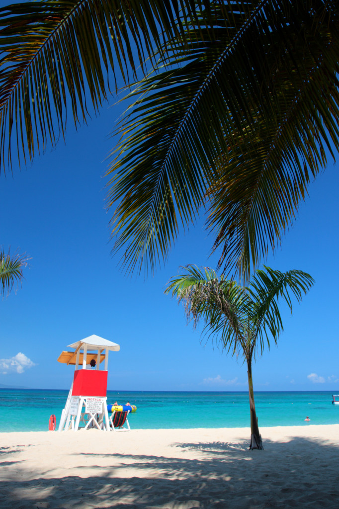 Year Certification Miami Beach